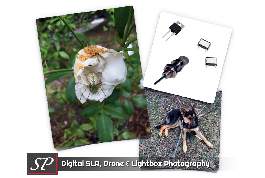 Digital SLR and Lightbox Photography